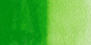 00323_PermanentGreen-l